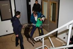 Oefening Politie Buggenum 147