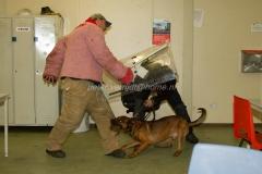 Oefening Politie Buggenum 183