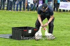Provinciale Kampionswedstrijd PH1 Te Berg aan de Maas 634