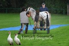 Provinciale Kampionswedstrijd PH1 Te Berg aan de Maas 643