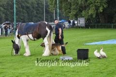 Provinciale Kampionswedstrijd PH1 Te Berg aan de Maas 671