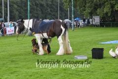 Provinciale Kampionswedstrijd PH1 Te Berg aan de Maas 672