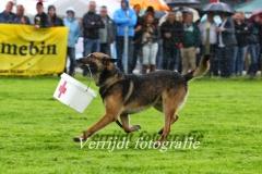 Provinciale Kampionswedstrijd PH1 Te Berg aan de Maas 726